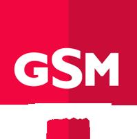 GSM Biz System